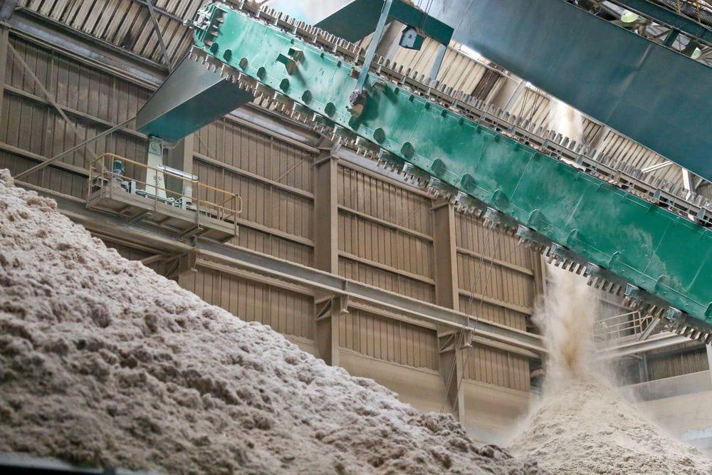 Énergies en Guadeloupe : la biomasse source d'énergie durable
