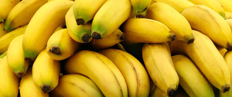 La République Dominicaine premier producteur de bananes biologiques au monde.